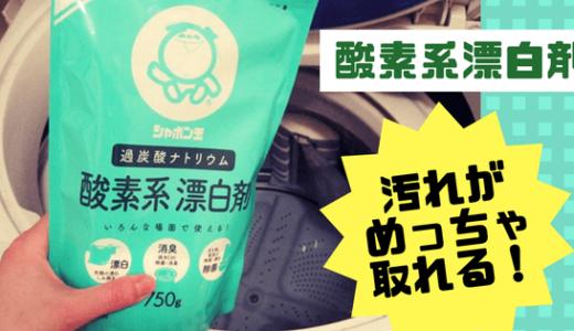 洗濯槽を洗おう!「酸素系漂白剤」を使った黒カビ・汚れの簡単お掃除レポ