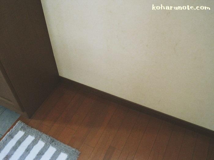 棚を撤去した後の玄関
