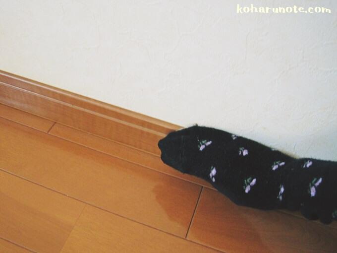 巾木を古靴下で掃除